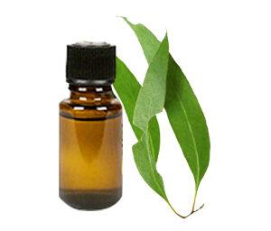 etarsko ulje eukaliptusa